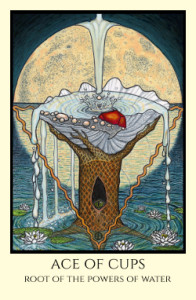bordered color Ace of Cups small